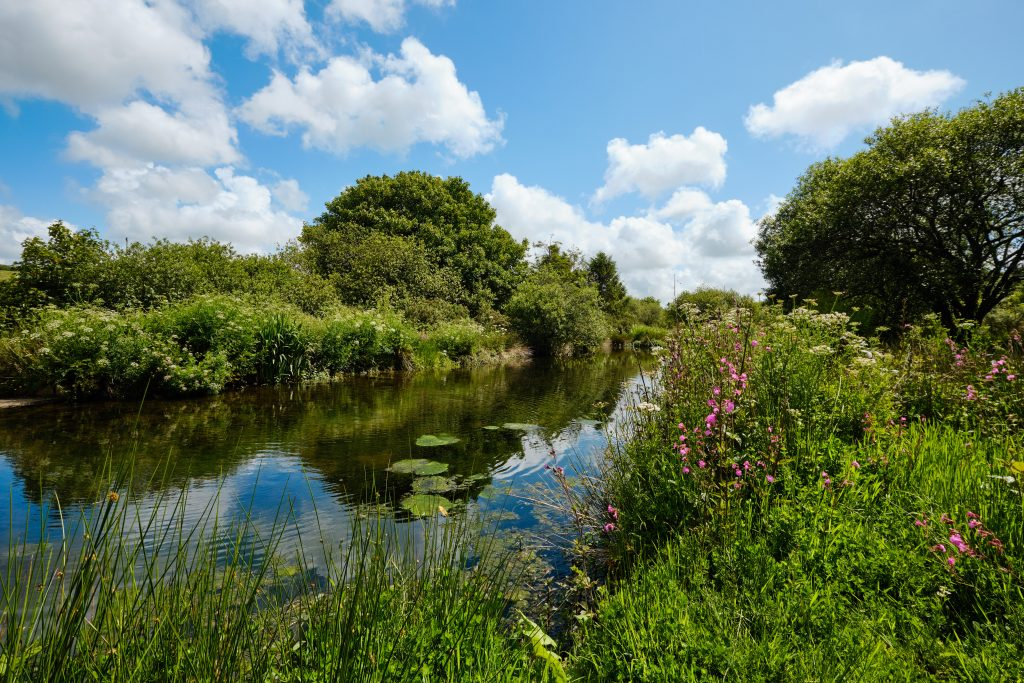 Peaceful lakes and countryside in Cornwall away from the crowds